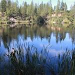 Hirschman's Pond poses problems