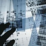 DNA Used to Track Genealogy
