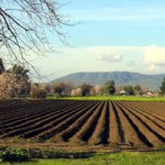 Nevada City Farmer Lobbies Congress
