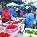 Grass Valley Farmers Market Starts Tonight