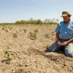 NID Preparing for Drought Declaration