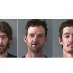 Three Arrested for Nevada Union Vandalism