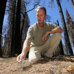 Ecologist to Speak on Benefits of Wildfire at Sierra College Event