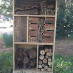Welcome to the Bug Hotel
