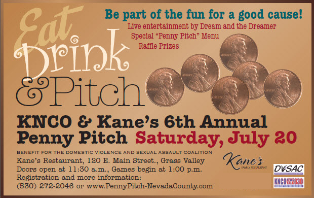 Penny Pitch