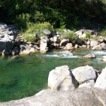 Swimmer Dies in Yuba River