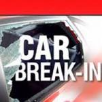 Car Break-in Suspect Caught in GV