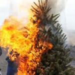 Live Christmas Trees Need Extra Fire Precautions