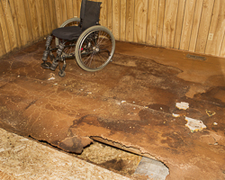 Dale Thomas floor rot
