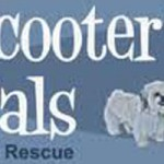 Scooter's Pals Event on Saturday