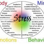 Stress Management Workshop in Grass Valley