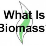Biomass Task Force Feasibility Study