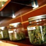 Pot Tax Expected To Pass Tuesday In Nevada City