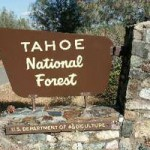 Widespread Pile Burns In Tahoe National Forest
