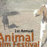 Animal Film Festival Saturday at Center for The Arts
