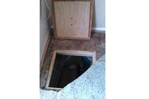 Trap-Door-1