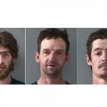 Three Arrested for Nevada Union Vandalism