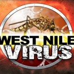 No West Nile Concerns Here Despite Wet Winter