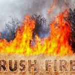 Vegetation Fire Threatens Two Homes