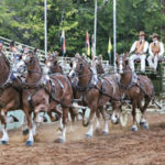 30th ANNUAL DRAFT HORSE CLASSIC AWARDS ANNOUNCED