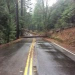 North Bloomfield Road Closed Due to Downed Tree