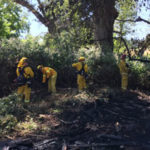 Vegetation Fire Started in Homeless Camp