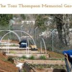 Food Bank Garden Dedicated to Toni Thompson