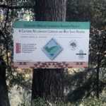 Sierra Fund Gets Grant To Support Nisenan