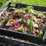 GV Wrestles with Composting Mandates