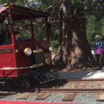 Celebrating the Narrow Guage Railroad in Nevada City