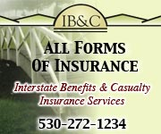 IB&C Insurance